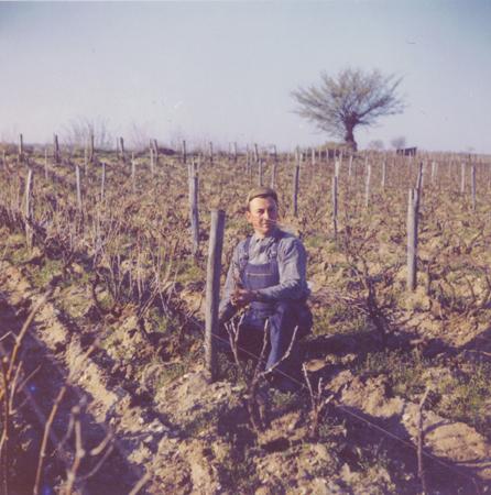 Guy Saget dans les vignes